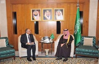 سفير مصر في الرياض يلتقي وزير الخارجية السعودي