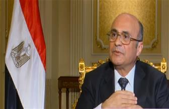 وزير شئون النواب: الأشقاء العرب دعموا مصر بملف حقوق الإنسان باستثناء قطر | فيديو