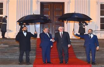 الرئيس السيسي يلتقي فرانك شتاينماير بمقر الرئاسة الألمانية