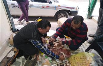 ضبط لحوم وأسماك مجمدة فاسدة بثلاجة حفظ شهيرة بحي ثان الإسماعيلية