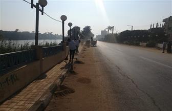 """محافظ أسيوط: استمرار حملات نظافة وتطوير الشوارع والميادين ضمن مبادرة """"شارك فى تجميلها"""""""