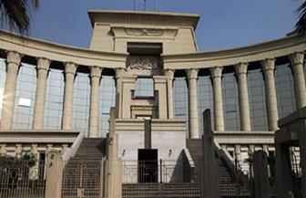 """حكم قضائي جديد للمحكمة الدستورية بشأن """"قانون نقابة الصحفيين"""""""