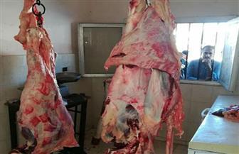 ضبط 14 جزارا يبيعون لحوما غير صالحة للاستهلاك في البحيرة