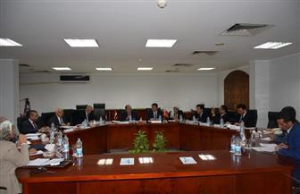 المجلس العربي للمياه يبحث نقل التجربة الصينية في الزراعة