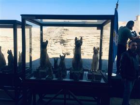 بدء فعاليات المؤتمر الصحفي للإعلان عن تفاصيل الكشف الأثري الجديد بمنطقة سقارة |صور