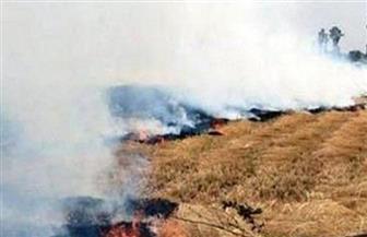 الحماية المدنية بكفرالشيخ تسيطر على حريق هائل في شونة قش على مساحة 3 آلاف متر