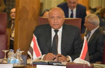 وزير الخارجية يؤكد موقف مصر الثابت من إقامة الدولة الفلسطينية على حدود 1967 | صور