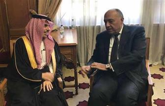 تفاصيل لقاء وزير الخارجية مع نظيره السعودي على هامش اجتماع جامعة الدول العربية