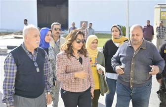 محافظة دمياط تتفقد ورش مدينة دمياط للأثاث | صور