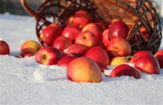 كيف تحافظ على التفاح طازجا؟