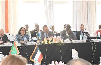 اللجنة الاقتصادية لإفريقيا تشيد برؤية مصر 2030 | صور