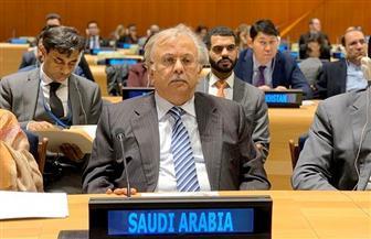 مندوب السعودية بالأمم المتحدة: المملكة تولي اهتماما بالغا بالقضية الفلسطينية