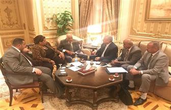 رئيس مجلس النواب يلتقى نواب الوادى الجديد | صور