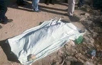 ضبط مرتكبى واقعة قتل شخص وسرقة مبلغ 700 ألف جنيه بالشيخ زايد