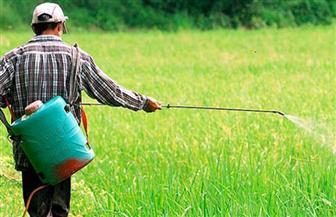دورة عن إنتاج الممرضات الحشرية لمكافحة الآفات الزراعية بمعهد بحوث وقاية النباتات