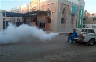 مسح 1470 خزان مياه خلال حملة لمكافحة الأمراض المتوطنة بمدن البحر الأحمر| صور