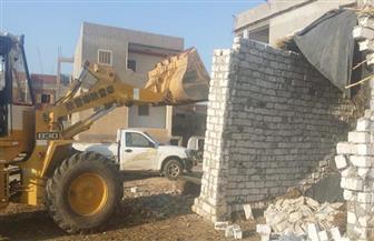 محافظ كفر الشيخ: إزالة المباني المخالفة والتعديات على الأراضي الزراعية | صور