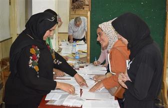إعادة انتخابات اتحاد طلاب جامعة المنصورة في 5 كليات الإثنين المقبل
