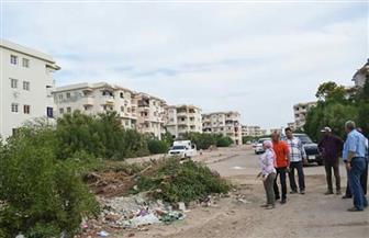 نائبة محافظ البحر الأحمر: فسخ التعاقد مع شركات النظافة حال عدم الالتزام |صور