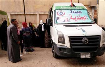 توقيع الكشف الطبي على 1622 حالة خلال قافلة بقرية نزلة محمود بالمنيا