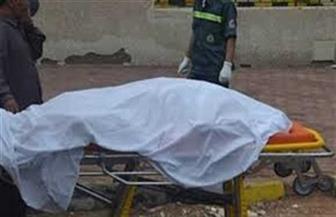 كشف ملابسات واقعة العثور على جثة بائع بالقليوبية.. وضبط مرتكب الواقعة