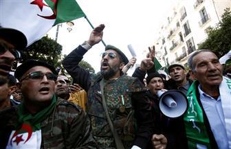 جزائريون يتظاهرون في العاصمة تأييدا للانتخابات الرئاسية