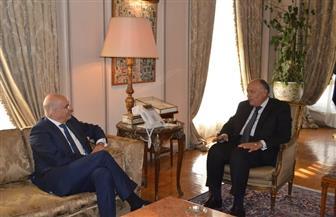 """""""الخارجية"""": توافق مصري ـ يوناني على عدم شرعية توقيع رئيس الوزراء الليبي على مذكرات مع دول أخرى"""