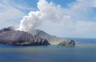 """شرطة نيوزيلندا تحقق بشأن مأساة بركان """"وايت أيلاند"""""""