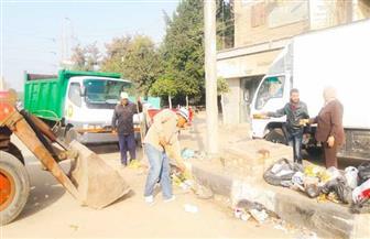 تكثيف أعمال النظافة ورفع 552 طن قمامة من 3 مراكز في الدقهلية | صور
