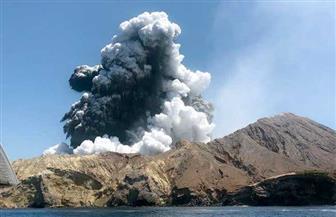 ارتفاع ضحايا بركان نيوزيلندا إلى 17 شخصا