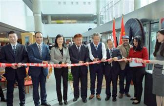 افتتاح المعرض الصيني للنحت على الصخور بمكتبة الإسكندرية | صور