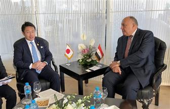 وزير الخارجية يلتقي النائب البرلماني لوزير خارجية اليابان