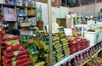 للمرة الثانية.. غرفة صناعة الحبوب تعلن مبادرة جديدة لتخفيض سعر المكرونة