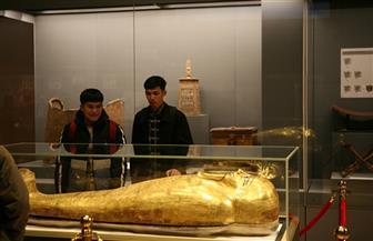 وفد من طلاب جامعة الأزهر من مختلف دول العالم يزور المتحف القومي للحضارة بالفسطاط | صور
