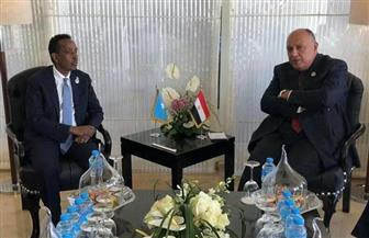وزير الخارجية يلتقي نظيره الصومالي على هامش منتدى أسوان