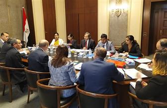 انعقاد الجولة الأولى للمشاورات السياسية المصرية ـ السريلانكية | صور