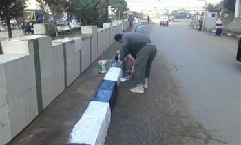 تنفذ فعاليات مبادرة «بأيدينا نجملها» لتنظيف شوارع وميادين سمنود | صور