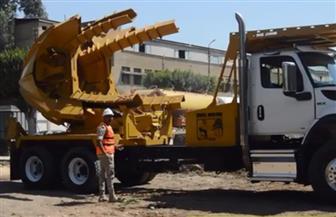 تعرف على جهود الهيئة الهندسية للقوات المسلحة لإعادة استزراع الأشجار بمصر الجديدة | فيديو