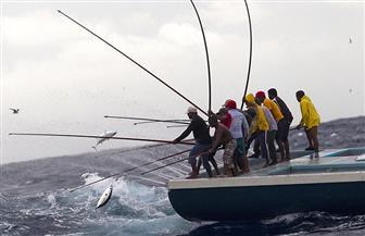 جهود ضخمة من شرطة المسطحات لحماية الثروة السمكية.. تعرف عليها
