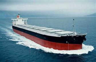 أمريكا تعتزم فرض عقوبات على 50 ناقلة نفط لقطع حركة التجارة بين إيران وفنزويلا