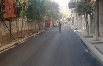 رصف 10 شوارع في حي ثان طنطا بتكلفة 5 ملايين جنيه | صور
