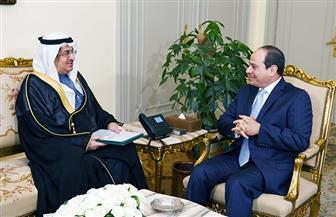 الرئيس السيسي يستقبل الدكتور عصام بن سعيد عضو مجلس الوزراء السعودي