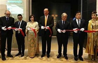 السفارة المصرية بسول تنظم حفلا بمناسبة افتتاح الجناح الفرعوني بالمتحف الكوري | صور