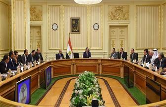 رئيس الوزراء يلتقي نواب البرلمان بمحافظتي شمال وجنوب سيناء | صور