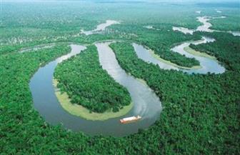 احتمال اختفاء غابة الأمازون في غضون 50 عاما