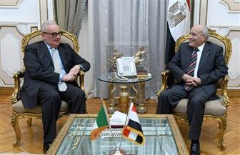 العصار يبحث مع السفير الإيطالي بالقاهرة سبل تعزيز التعاون المشترك