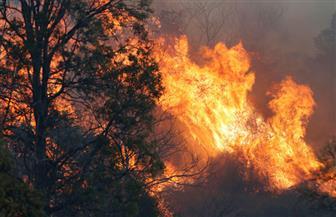 وفيات ودمار جراء حرائق الغابات في أستراليا وسط ارتفاع قياسي لدرجات الحرارة