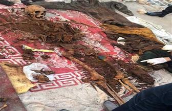 """نيابة محرم بك تلجأ لـ """"دي إن أيه"""" لكشف هوية جثتين عثر عليهما بالإسكندرية"""
