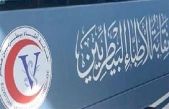 البيطريين: اللجنة العليا للانتخابات تتابع استعدادات 55 لجنة للتصويت بالمحافظات