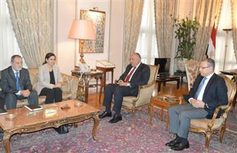 سامح شكرى يستقبل رئيسة الهيئة التنفيذية لمجلس سوريا الديمقراطية | صور